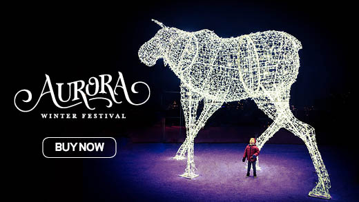Young child at Aurora Winter Festival looking a light sculpture Buy Now